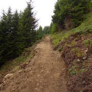 Il nuovo sentiero Capanna Brogoldone - Alpe di Motto