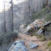 Sentiero per l'Alp de Fora