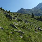 Alpe Stou