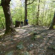 Sul sentiero per l'Alpe Motarina