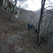 Sentiero che da Creda sale all'Alpe Bolla