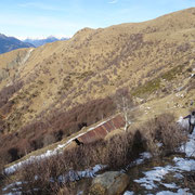 Discesa all'Alpe Crocc