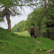 Sulla crestina verso l'Alpe di Gesero
