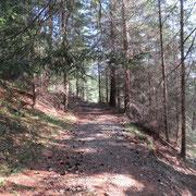 Sentiero per l'Alp de Palazi