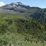 Alp di Rogg