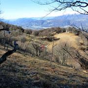 Verso l'Alpe Bolla