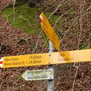 Dalla strada che conduce a Crotta deviamo per l'Alpe Loasa