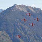 Patrouille Suisse e la Cime della Trosa