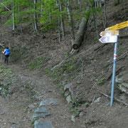 Tasséra 964 m, deviamo per il Motto della Croce