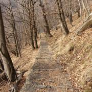 Sentiero che scende a Ponte di Piero