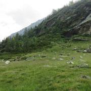 Alp de Poz 1631 m