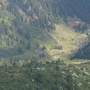 Alp d'Albionasca