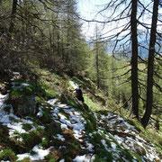 Sentiero Alpe di Gagèrn - Alpe di Motto