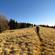 Sentiero per l'Alpe di Gesero