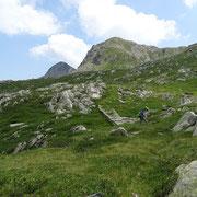 Sul sentiero per l'Alp d'Albion