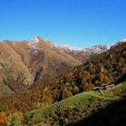 Alpe Ladrim 1518 m