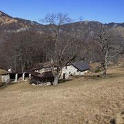Alpe (Cascina) Sala 1095 m