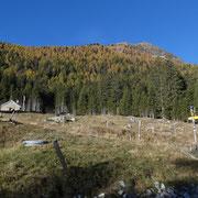 Alp de Palazi 1572 m e Martum