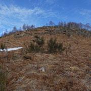 Monte Borgna