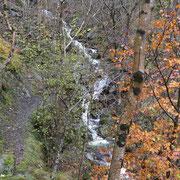 Sul sentiero che sale ai Monti di Camignolo