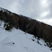 Bellissimo sentiero che conduce alla Capanna Brogoldone