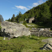 Alpe Foppascia 1900 m