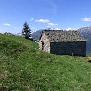 Alpe di Tongia 1478 m