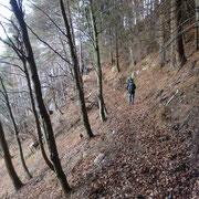 Il sentiero che ci riporta ai Monti di Ravecchia