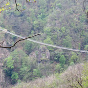 Dal sentiero vediamo il Ponte Tibetano
