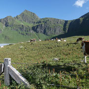 Alpe di Piora