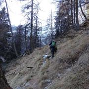 Inizia la ripida salita per l'Alp d'Arbeola