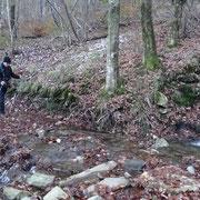 Sul sentiero che conduce ai Monti di Bassano