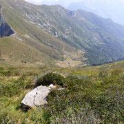 Verso l'Alpe di Bietri