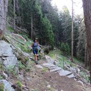 Sul sentiero per l'Alpe Forcarid