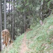 Sul sentiero che tra i ripari valangari conduce a Giof