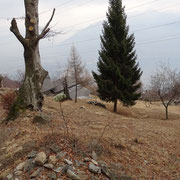 Chiodo 1245 m