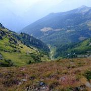 Verso l'Alp de Bec Sura dal Fil de Calvaresc