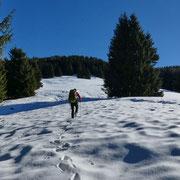 Alpe d'Arbino 1650 m