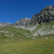 Alp de Confin 2250 m