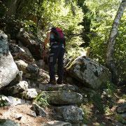 Ritorniamo ai Monti di Saurù passando da Parusciana