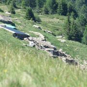 Alpe di Gagèrn