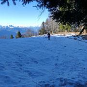 Proseguiamo verso l'Alpe d'Arbino
