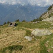Alpe di Canee