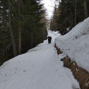 Sulla sterrata verso l'Alpe della Costa
