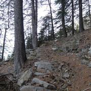 Sentiero per Forcarid