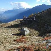 Alpe Sasso Iéi 2041 m