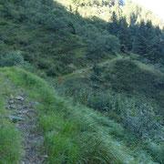 Sul sentiero per l'Alpe di Poltrinone