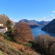 San Salvatore e Monte Boglia