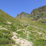 Salita al Pass de Buffalora