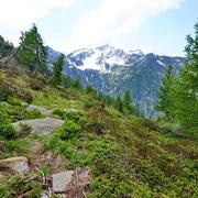 Ritorniamo all'Alp Vec